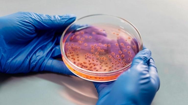 PhD biotech programs