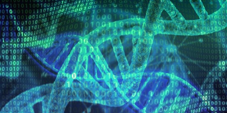 PhD in Bioinformatics