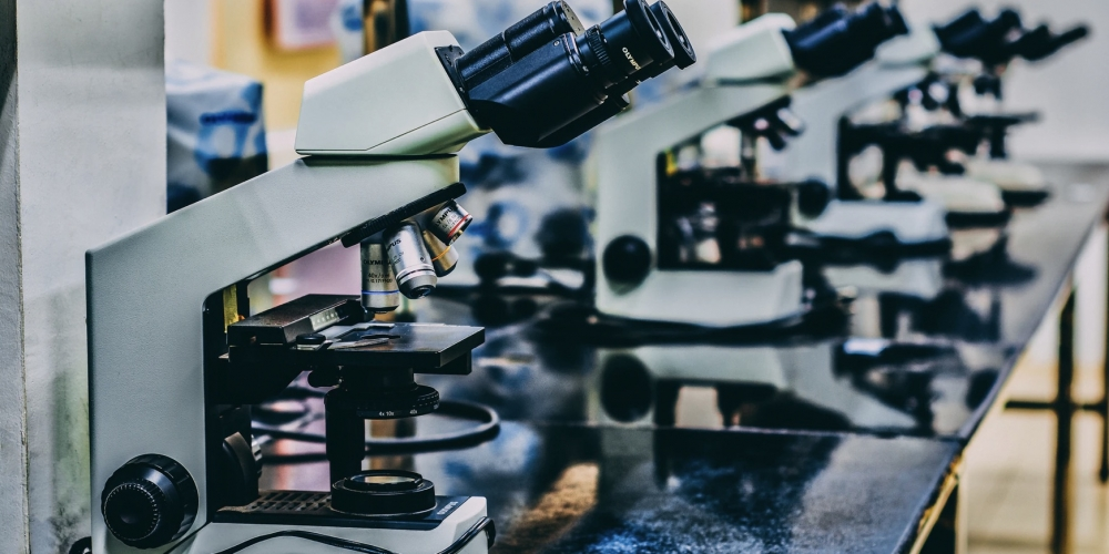 What is Scientific Misconduct?